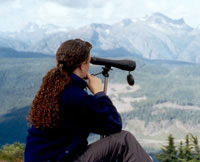 Scouting for Vancouver Island marmots