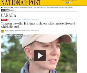 National Post capture