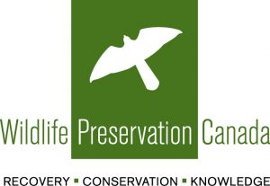 WPC New Logo