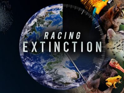 """Racing Extinction"" Screening"