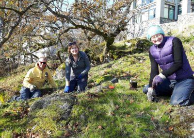 HAT Planting Nov 4 - 2