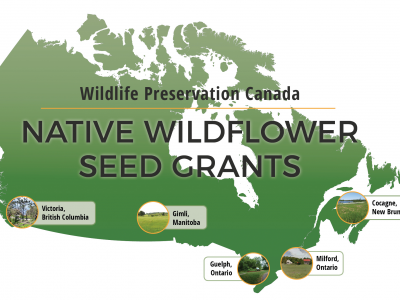 Wildflower Seed Grant Winners