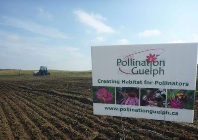 Pollination Guelph Landfill site
