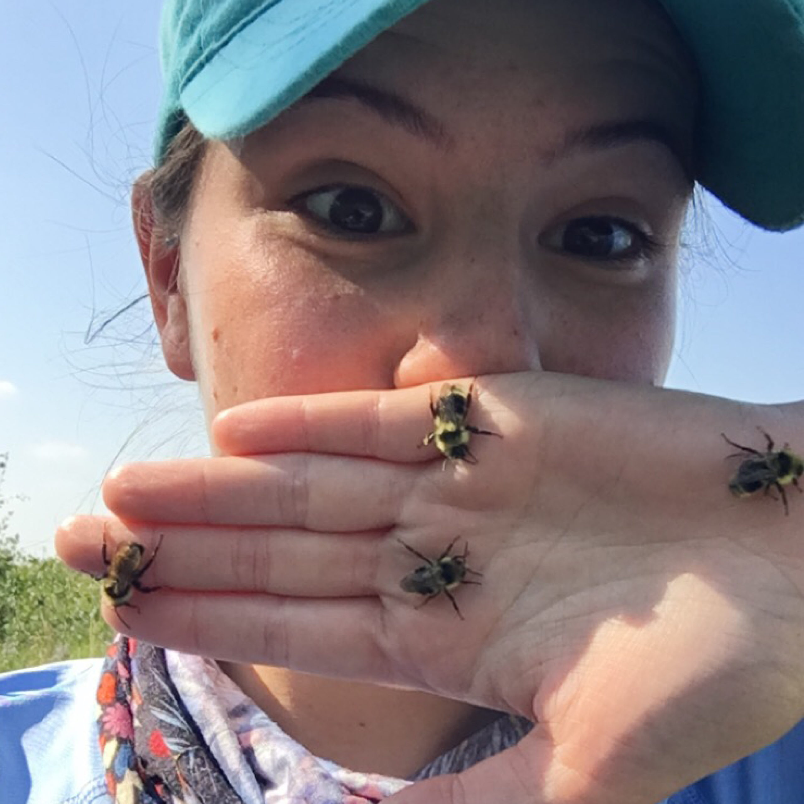 Native pollinator lead biologist Genevieve Rowe sharing her love of bumble bees.