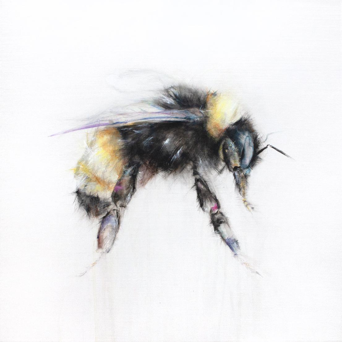 Bumble Bee I_1111_2