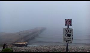 Spooky fog in the Bruce Peninsula!