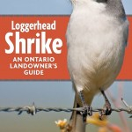 Shrike Landowners Guide